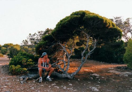 "This picture was shot in '98 during my vacation on the beautiful iland Ibiza. This wonderful place is not only famous for the nightclubs and all night patying, the nature on this iland is unbelievable! especialy the ""Junipers"" that grow there are amazing. On the coast line I dicovered a spot were incredible old and contorted ""Junipers"" grow! Among them this old Pine kept watch! The temperatures are scortching here in Summer time and it hardle ever rains, so beside that this Pine is very beautyful it is also very special, to be able to grow here for such a long time! I also nottisted that I was in much better shape back then! :)"