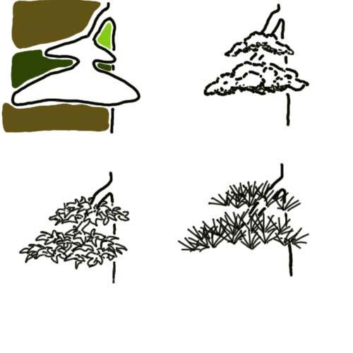foliage-size-1