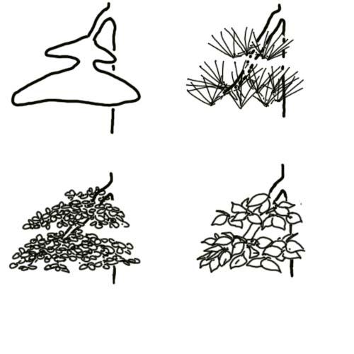 foliage-size-2