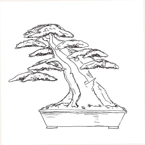 Dirk's yew design 2