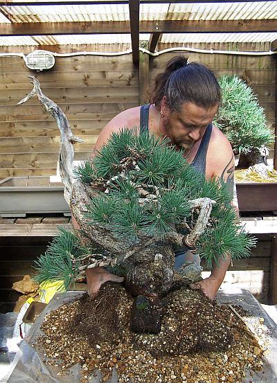 30-8-2009 verpot dag 150 Hans van Meer