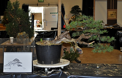 joy of bonsai 2010 050 Hans van Meer