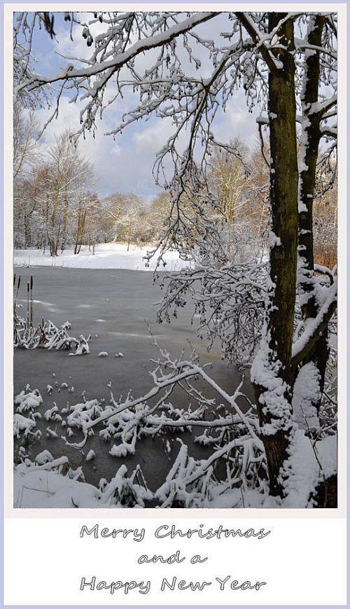 Kerst-2012 by Hans van Meer 500