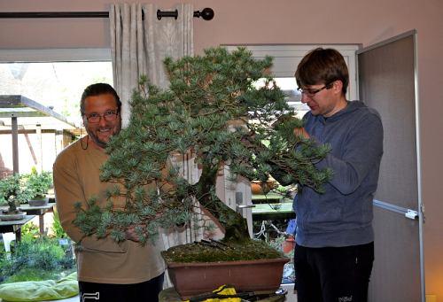 12-5-2014 Larix 013 Hans van Meer 500