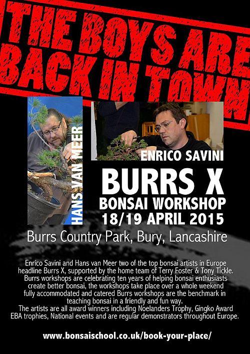 burrs 2015 blog
