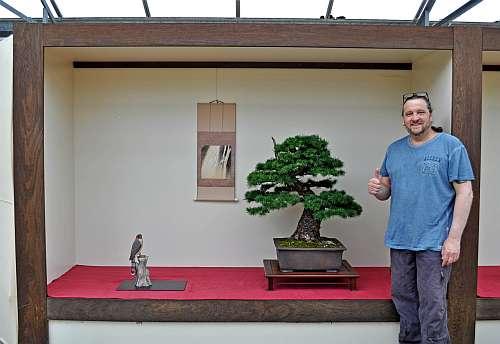28-5-2016 KEI-BONSAI-KAI SHOW 016 hans van meer 500